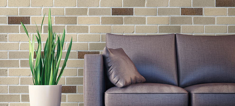 Veneer Brick and the Environment
